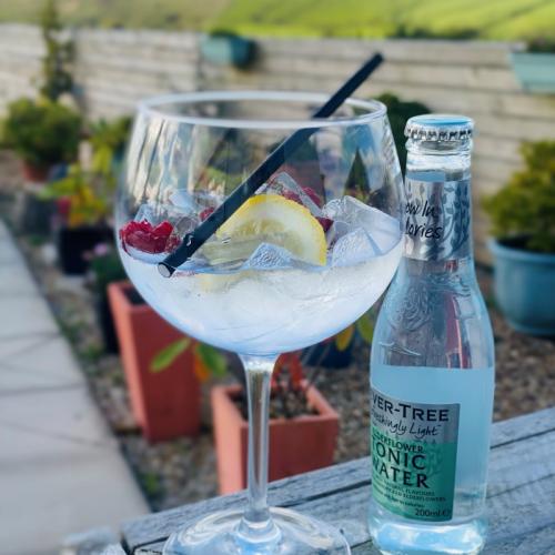 roebuck-gin-glass-1